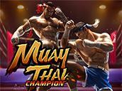 Muay Thai Champion