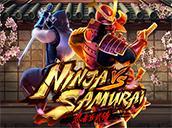 Ninja vs Samurai
